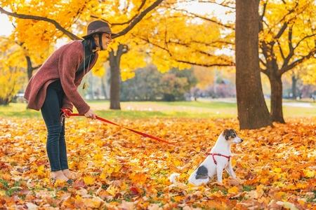 Im goldenen Herbst macht es besonders Spaß, mit Hunden Gassi zu gehen.